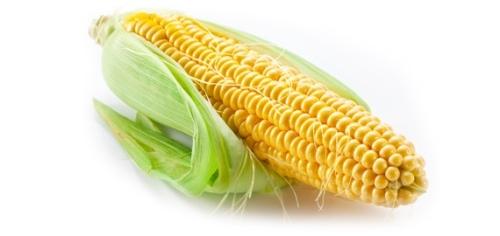 corn_husk_570xxxx